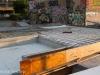 Heaven Skate Park Project 19