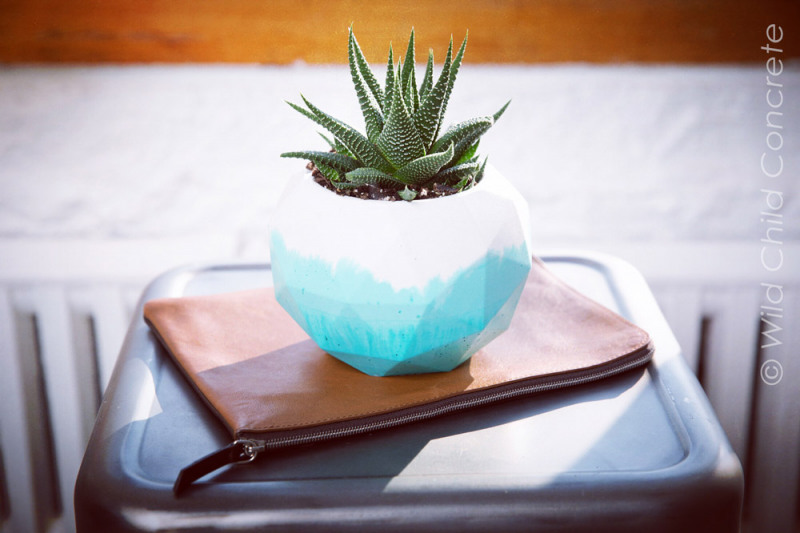 Wild Child  Custom succulent planter
