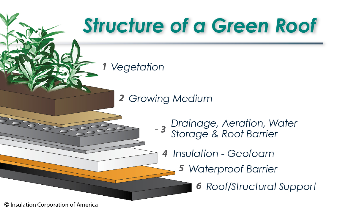 Structure of a Green Roof