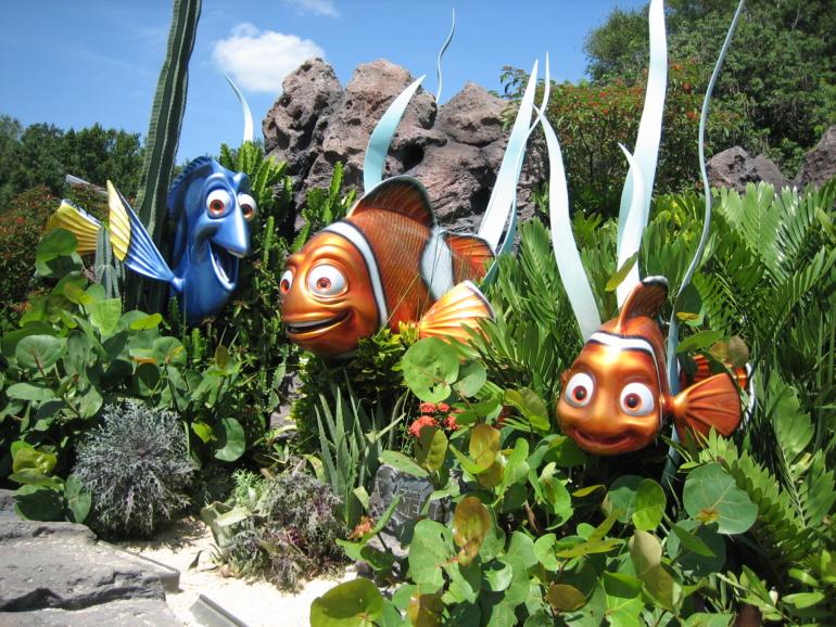 Finding Nemo at Disney World